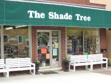 The_Shade_Tree_225_169_s